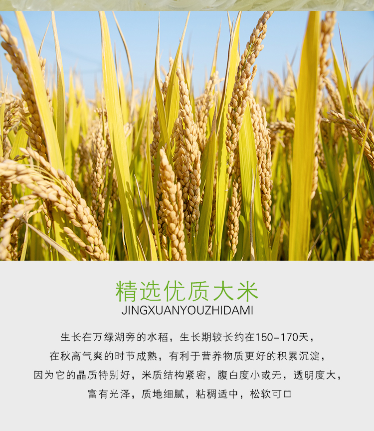 米粉-淮山3_04.jpg